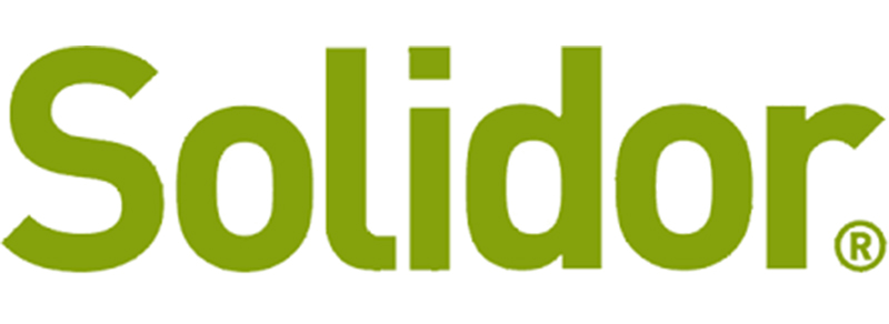 How Much is a Solidor?